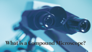 What Is a Compound Microscope