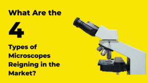 What Are the Four Types of Microscopes Reigning in the Market?