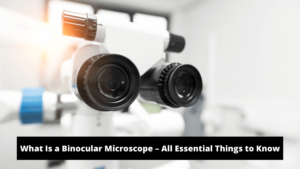 What Is a Binocular Microscope – All Essential Things to Know